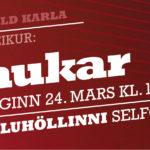selfoss-haukar-24mars-kk-net