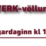 20200711 S-Fjarðabyggð 2D kk – Vefborði